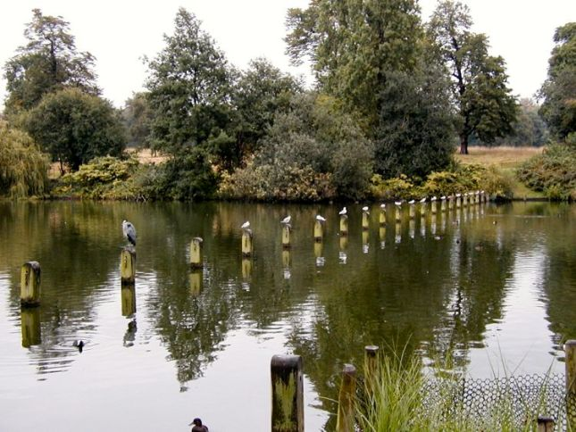 Photo of Long Water, Kensington Gardens